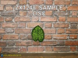 ZX1248_SAMPLE