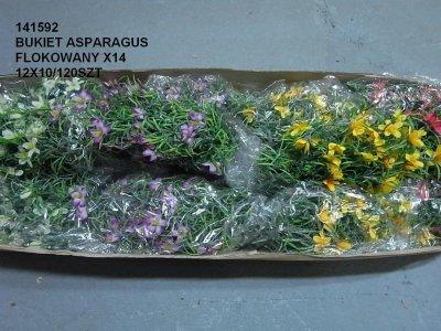BUKIET ASPARAGUS FLOKOWANY X14