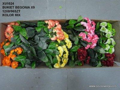 BUKIET BEGONIA X9
