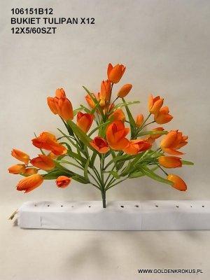 bukiet tulipan x 12